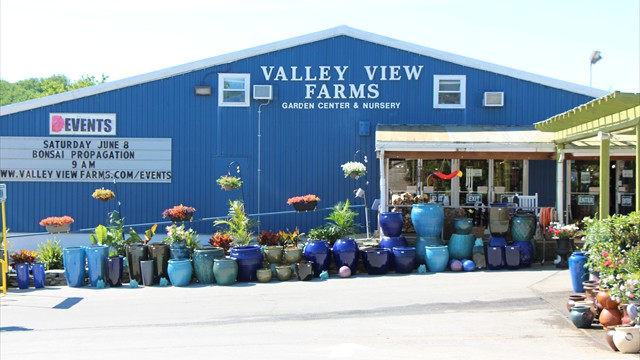 Valley View Farms: Home Page